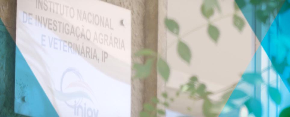 Conheça o Instituto Nacional de Investigação Agrária e Veterinária (INIAV) em um minuto