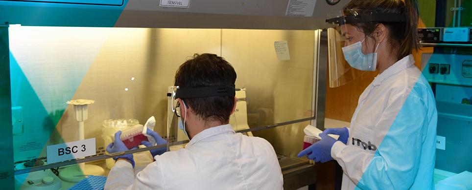 COVID-19: Mais de 5 mil testes realizados a profissionais de 1º linha em Oeiras
