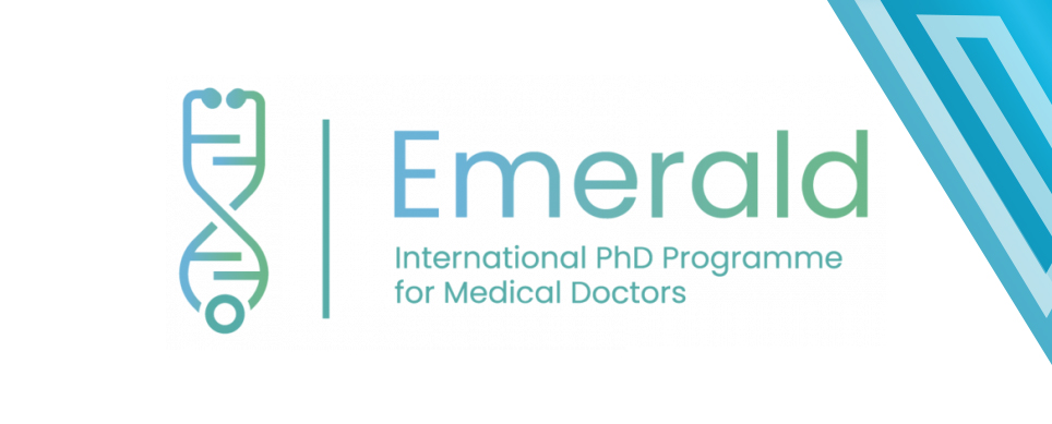 IGC colabora no primeiro programa de formação doutoral para médicos na Europa